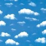 Profilbild von cloudy